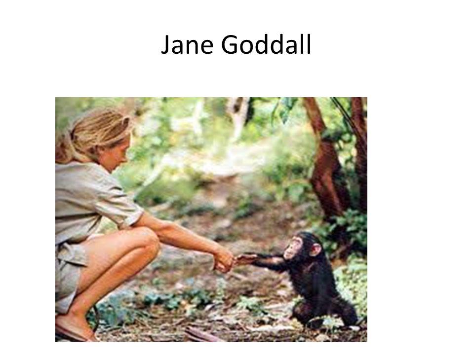Jane Goddall