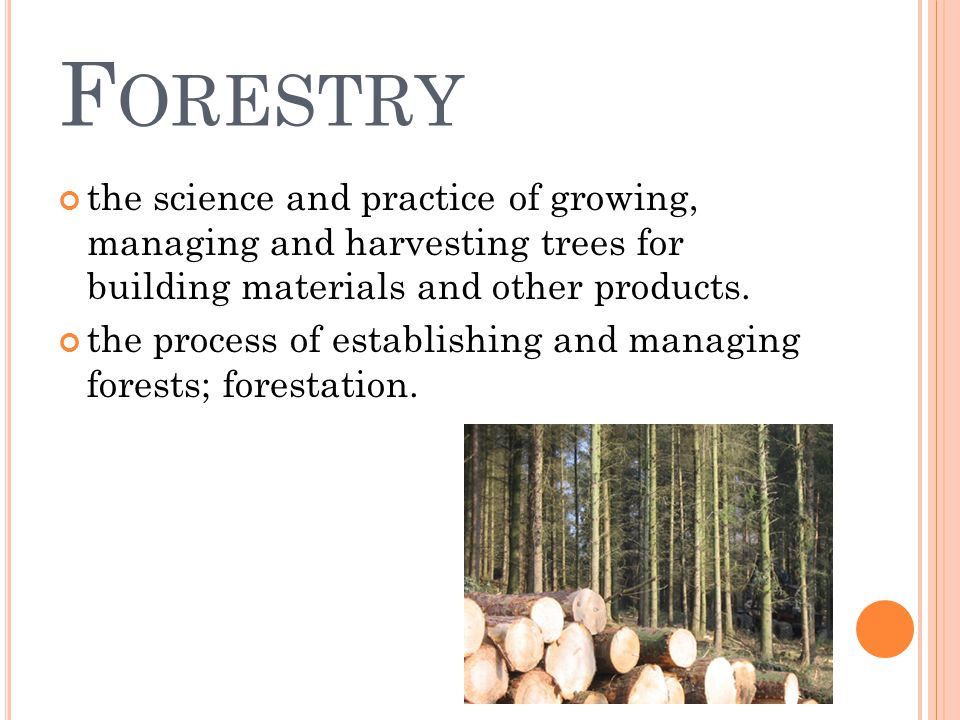 F ORESTRY the science and practice of growing, managing and harvesting trees for building materials and other products. the process of establishing an