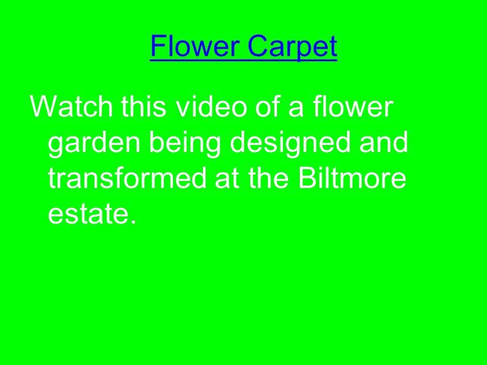 Flower Carpet Watch this video of a flower garden being designed and transformed at the Biltmore estate.