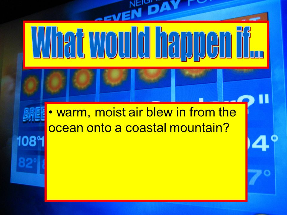 warm, moist air blew in from the ocean onto a coastal mountain