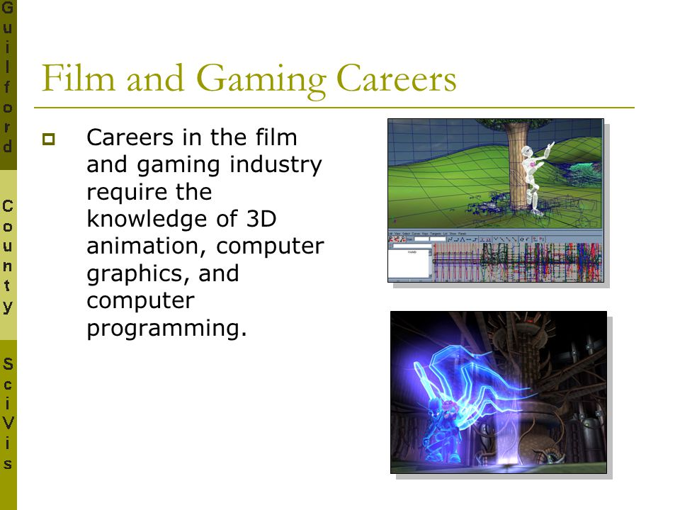Film and Gaming Careers  Careers in the film and gaming industry require the knowledge of 3D animation, computer graphics, and computer programming.