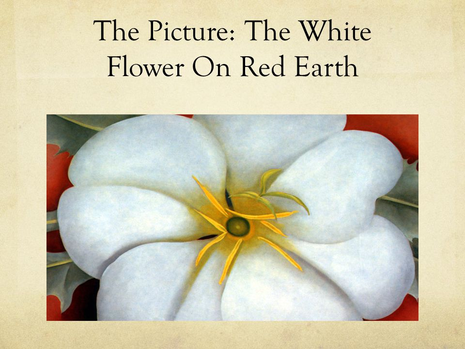 Georgia okeeffe by nikita jay 6e the picture the white flower on 2 the picture the white flower on red earth mightylinksfo