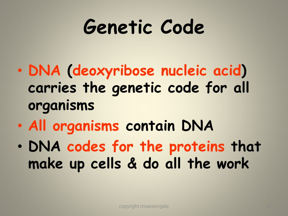 Genetic Code DNA (deoxyribose nucleic acid) carries the genetic code for all organisms All organisms contain DNA DNA codes for the proteins that make up cells & do all the work copyright cmassengale16