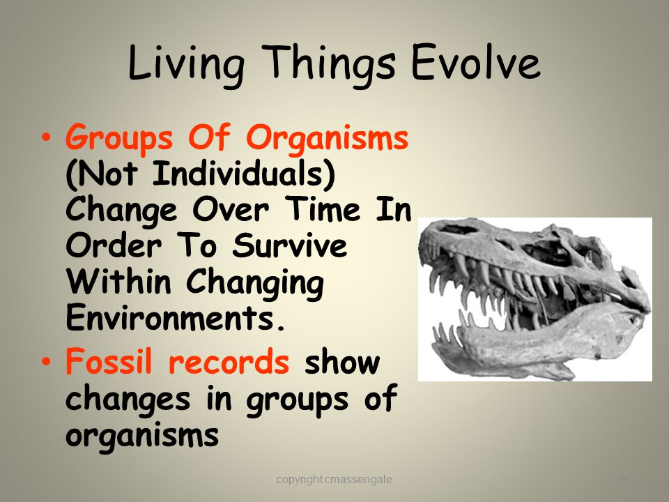 Living Things Evolve Groups Of Organisms (Not Individuals) Change Over Time In Order To Survive Within Changing Environments.