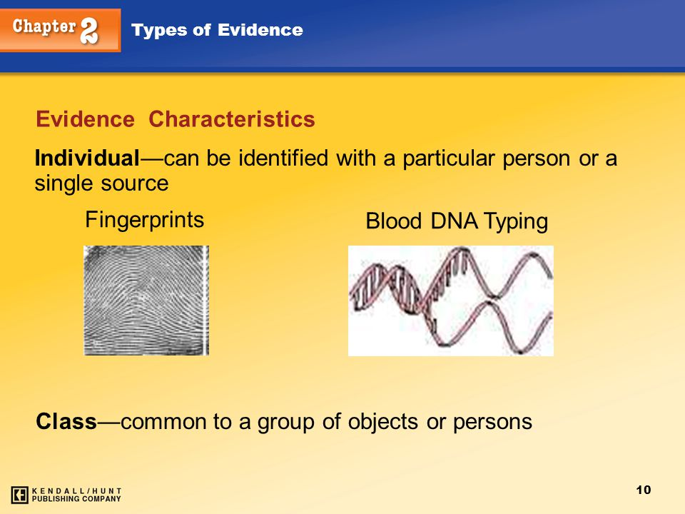 Types of Evidence 10 Evidence Characteristics Individual—can be identified with a particular person or a single source Blood DNA Typing Fingerprints C