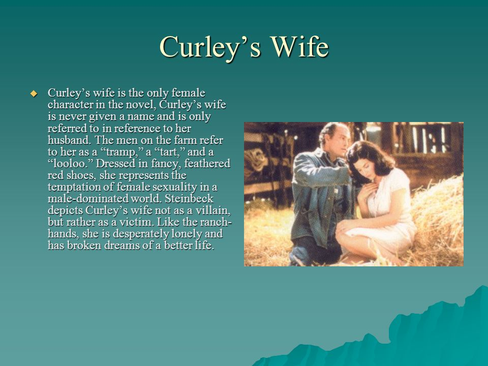 Curley's Wife  Curley's wife is the only female character in the novel, Curley's wife is never given a name and is only referred to in reference to her husband.