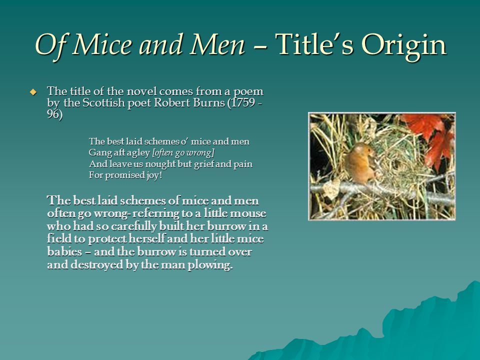 Of Mice and Men – Title's Origin  The title of the novel comes from a poem by the Scottish poet Robert Burns (1759 - 96) The best laid schemes o' mice and men Gang aft agley [often go wrong] And leave us nought but grief and pain For promised joy.