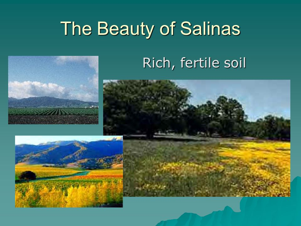 The Beauty of Salinas  Rich, fertile soil