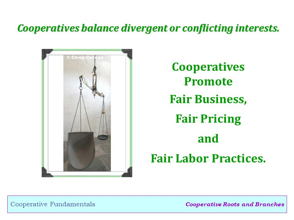 Cooperative Roots and Branches Cooperative Fundamentals Cooperatives balance divergent or conflicting interests.