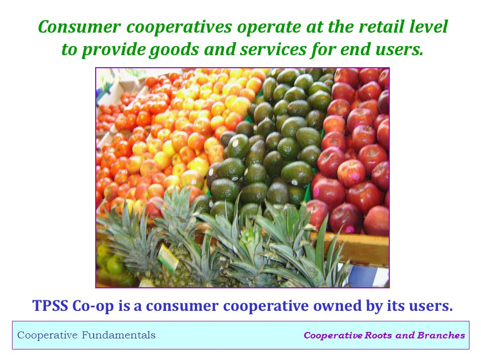 Cooperative Roots and Branches Cooperative Fundamentals Consumer cooperatives operate at the retail level to provide goods and services for end users.