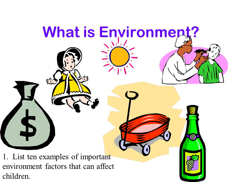What is Environment. 1.