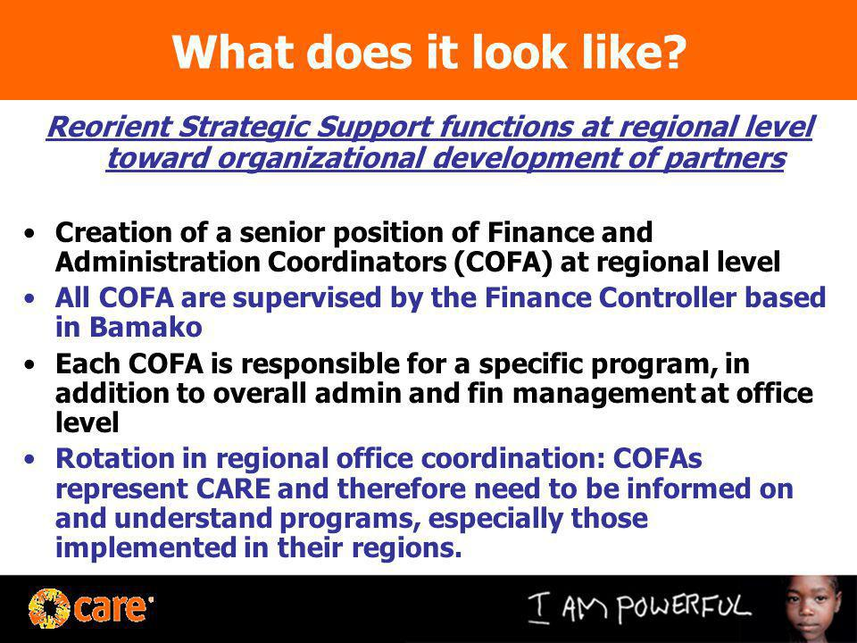 What does it look like? Reorient Strategic Support functions at regional level toward organizational development of partners Creation of a senior posi