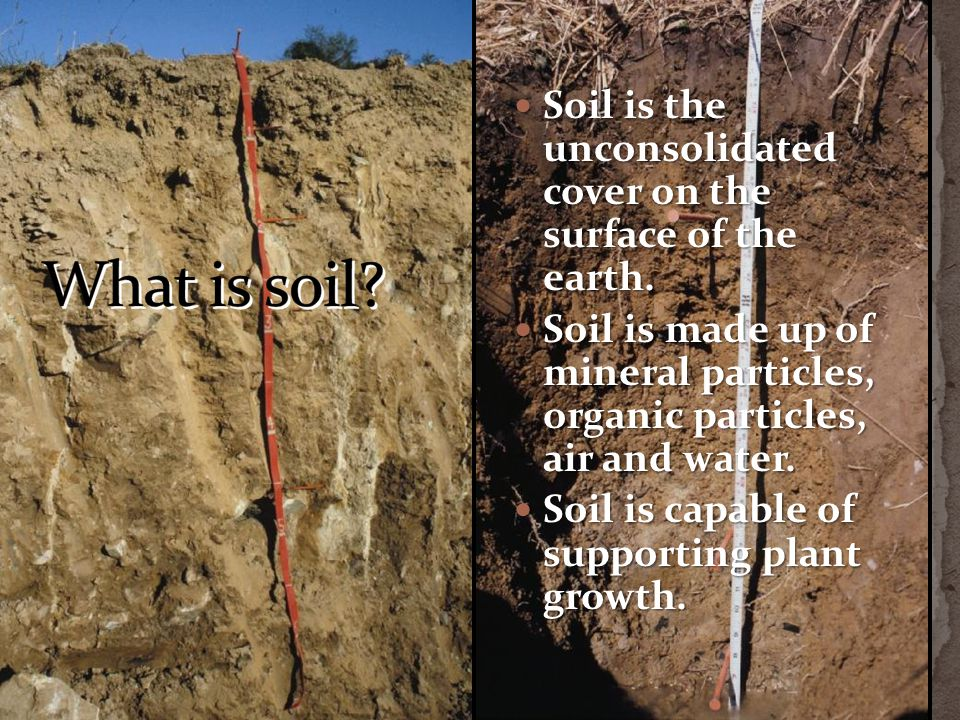 Soil is the unconsolidated cover on the surface of the earth. Soil is the unconsolidated cover on the surface of the earth. Soil is made up of mineral