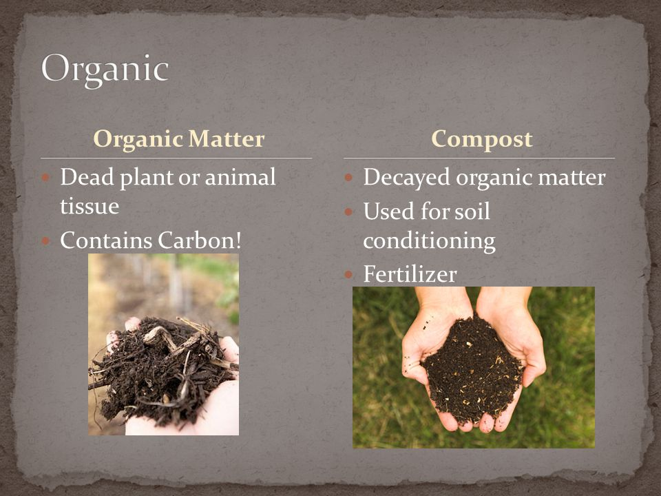 Organic Matter Dead plant or animal tissue Contains Carbon! Decayed organic matter Used for soil conditioning Fertilizer Compost