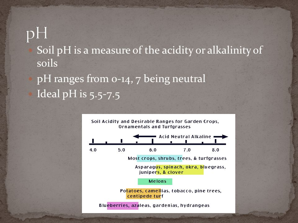 Soil pH is a measure of the acidity or alkalinity of soils pH ranges from 0-14, 7 being neutral Ideal pH is 5.5-7.5