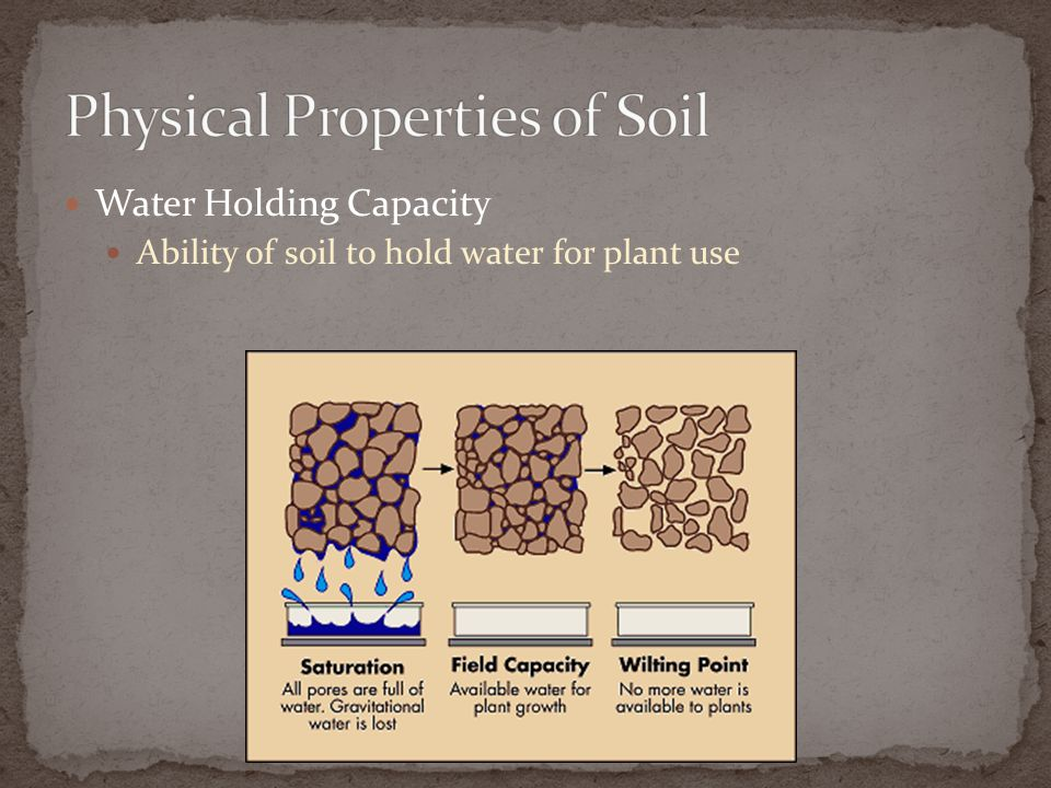 Water Holding Capacity Ability of soil to hold water for plant use