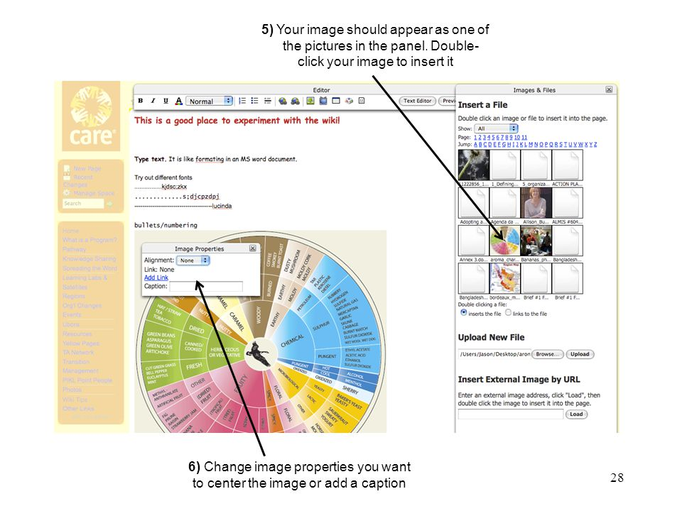28 The Sandbox, Insert Image 2 5) Your image should appear as one of the pictures in the panel.