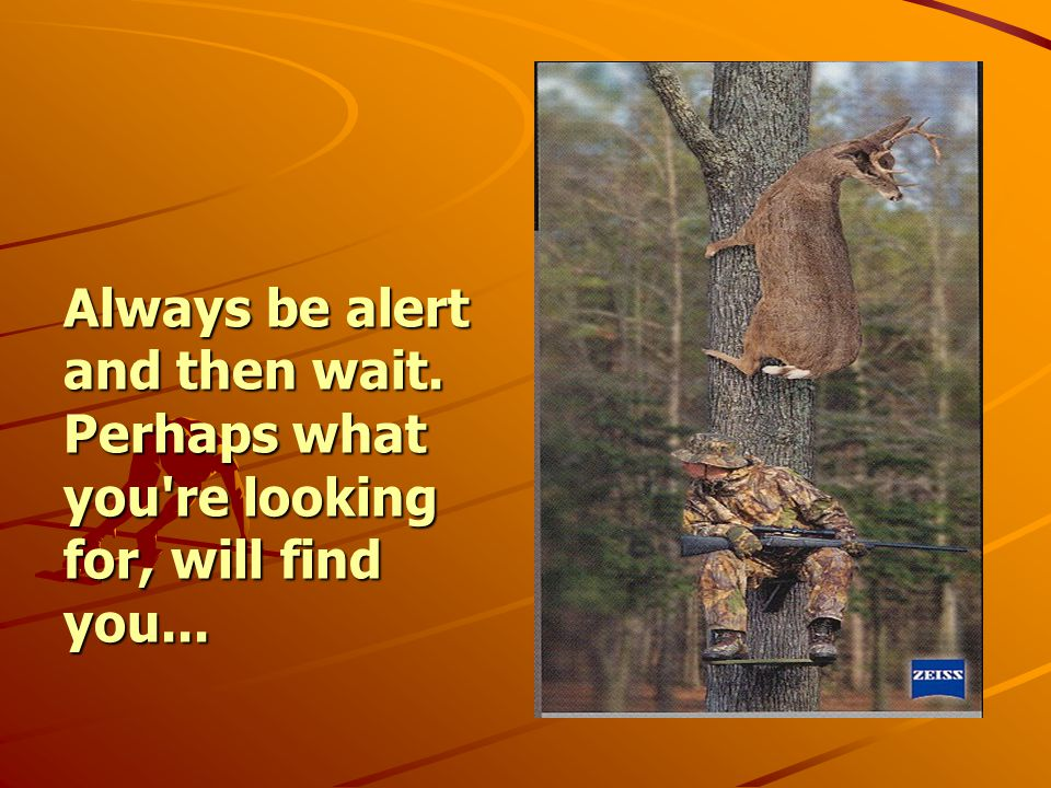 Always be alert and then wait. Perhaps what you re looking for, will find you...