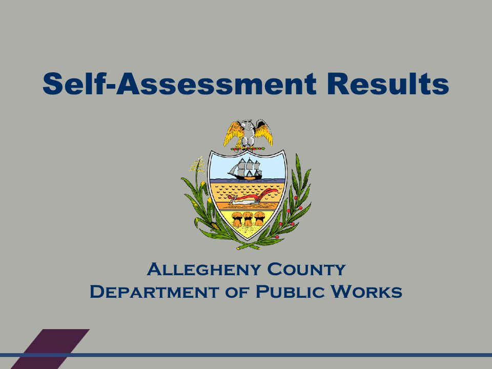Self-Assessment Results Allegheny County Department of Public Works