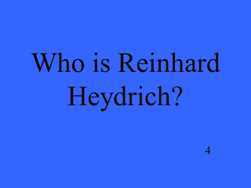 Who is Reinhard Heydrich 4
