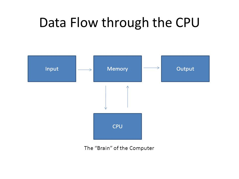 "Data Flow through the CPU InputMemoryOutput CPU The ""Brain"" of the Computer"