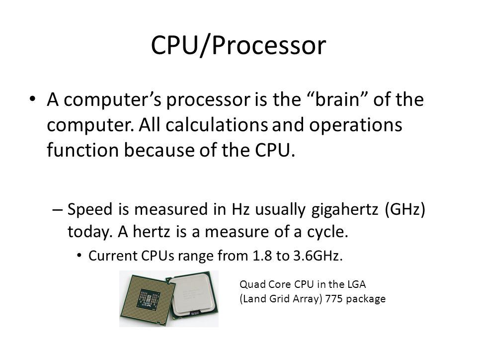"CPU/Processor A computer's processor is the ""brain"" of the computer. All calculations and operations function because of the CPU. – Speed is measured"