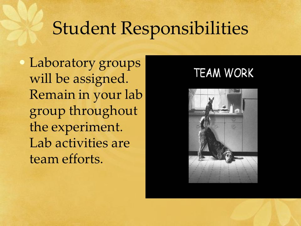 Student Responsibilities Do the experiments as assigned and in the manner prescribed.
