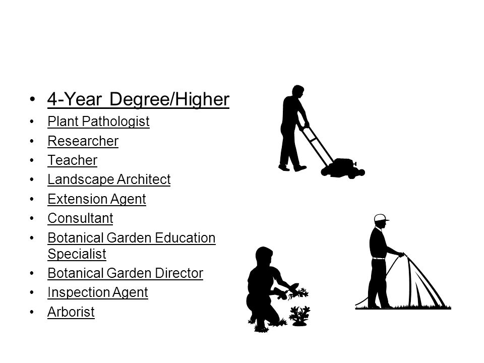 4-Year Degree/Higher Plant Pathologist Researcher Teacher Landscape Architect Extension Agent Consultant Botanical Garden Education Specialist Botanic