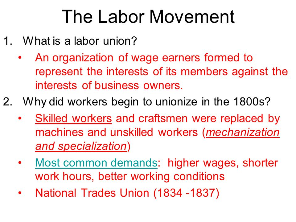The Labor Movement 1.What is a labor union.