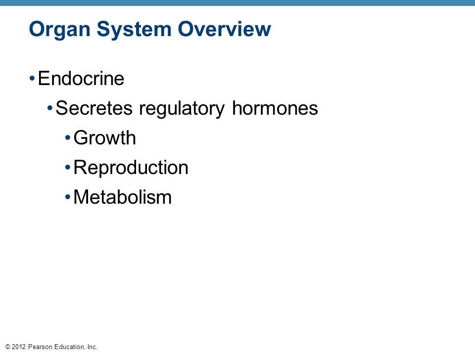 © 2012 Pearson Education, Inc. Organ System Overview Endocrine Secretes regulatory hormones Growth Reproduction Metabolism