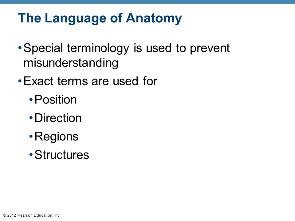 © 2012 Pearson Education, Inc. The Language of Anatomy Special terminology is used to prevent misunderstanding Exact terms are used for Position Direc