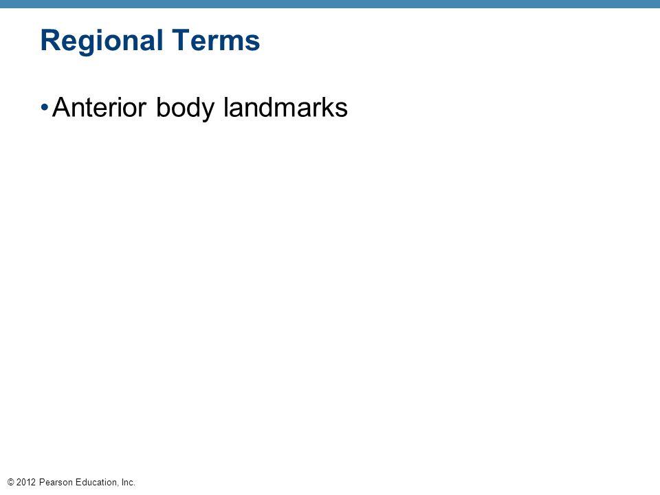 © 2012 Pearson Education, Inc. Regional Terms Anterior body landmarks