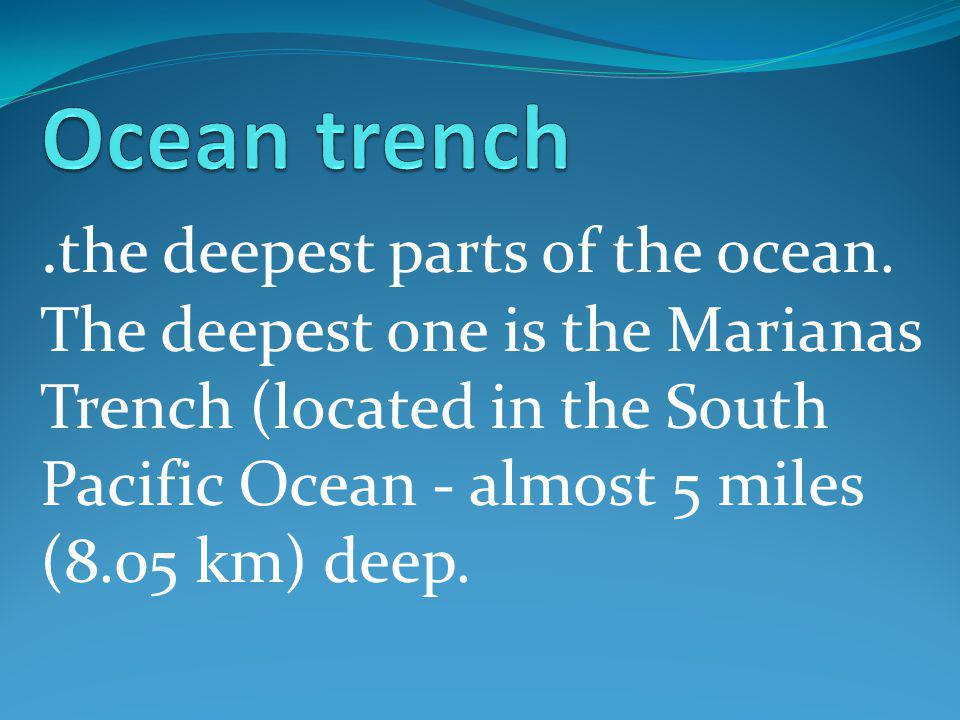 the deepest parts of the ocean.