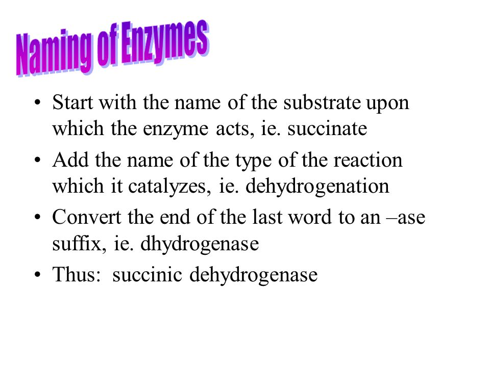 Start with the name of the substrate upon which the enzyme acts, ie. succinate Add the name of the type of the reaction which it catalyzes, ie. dehydr