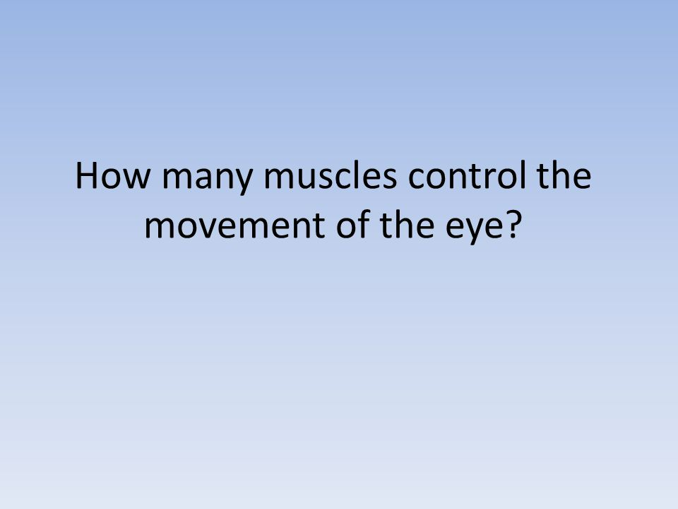 How many muscles control the movement of the eye