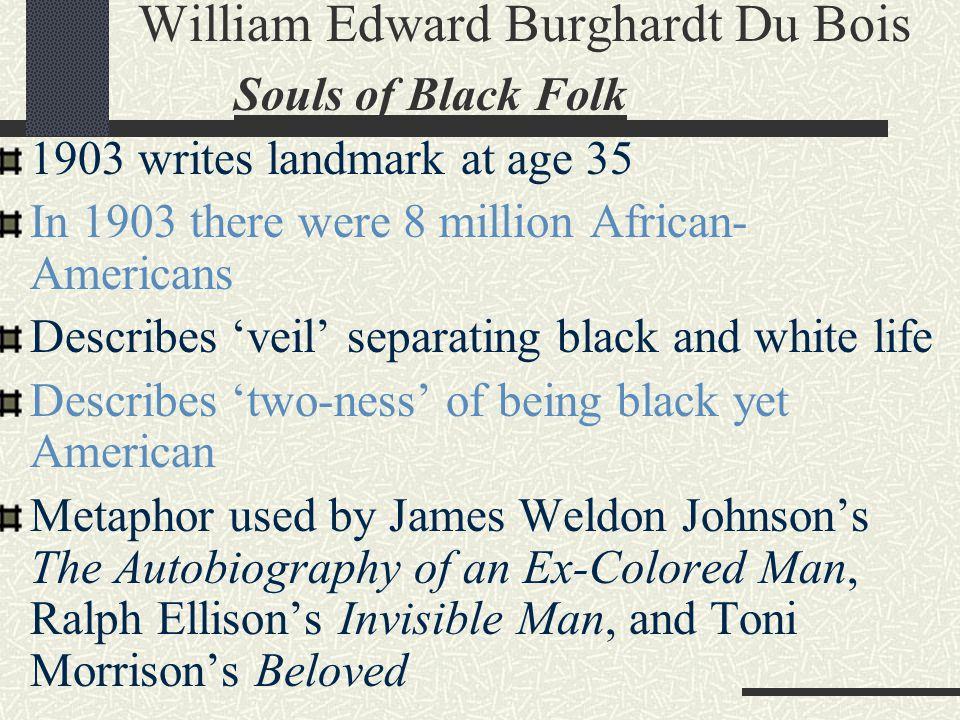 William Edward Burghardt Du Bois Souls of Black Folk 1903 writes landmark at age 35 In 1903 there were 8 million African- Americans Describes 'veil' s