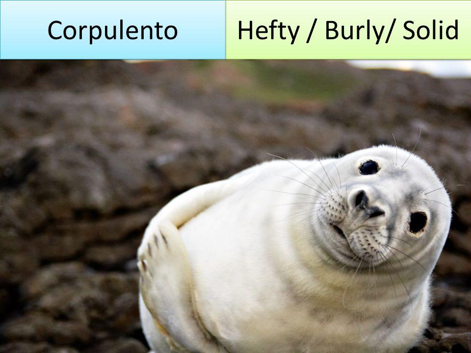 Corpulento Hefty / Burly/ Solid