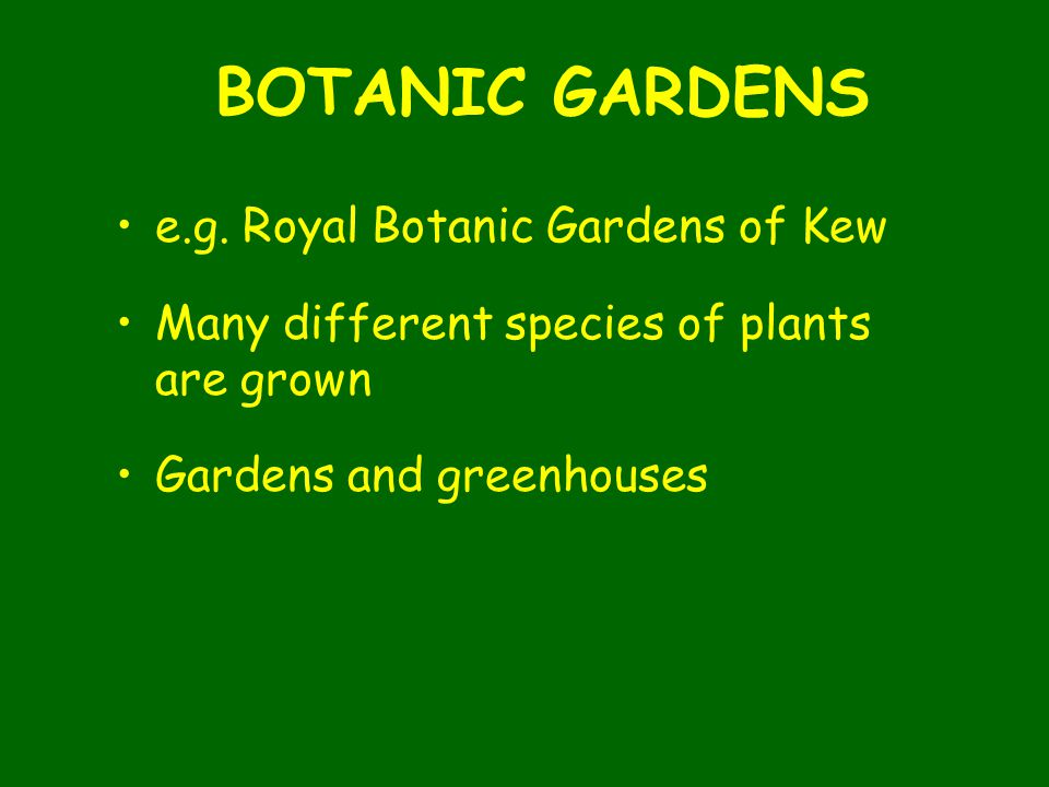 BOTANIC GARDENS e.g. Royal Botanic Gardens of Kew Many different species of plants are grown Gardens and greenhouses