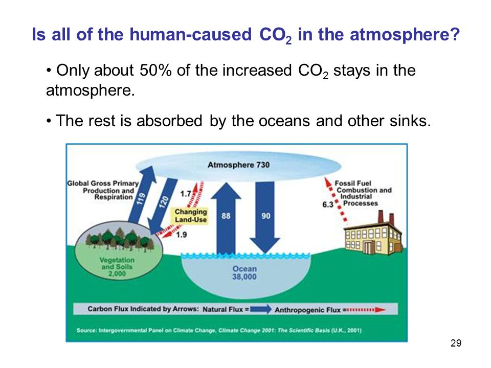 29 Is all of the human-caused CO 2 in the atmosphere.