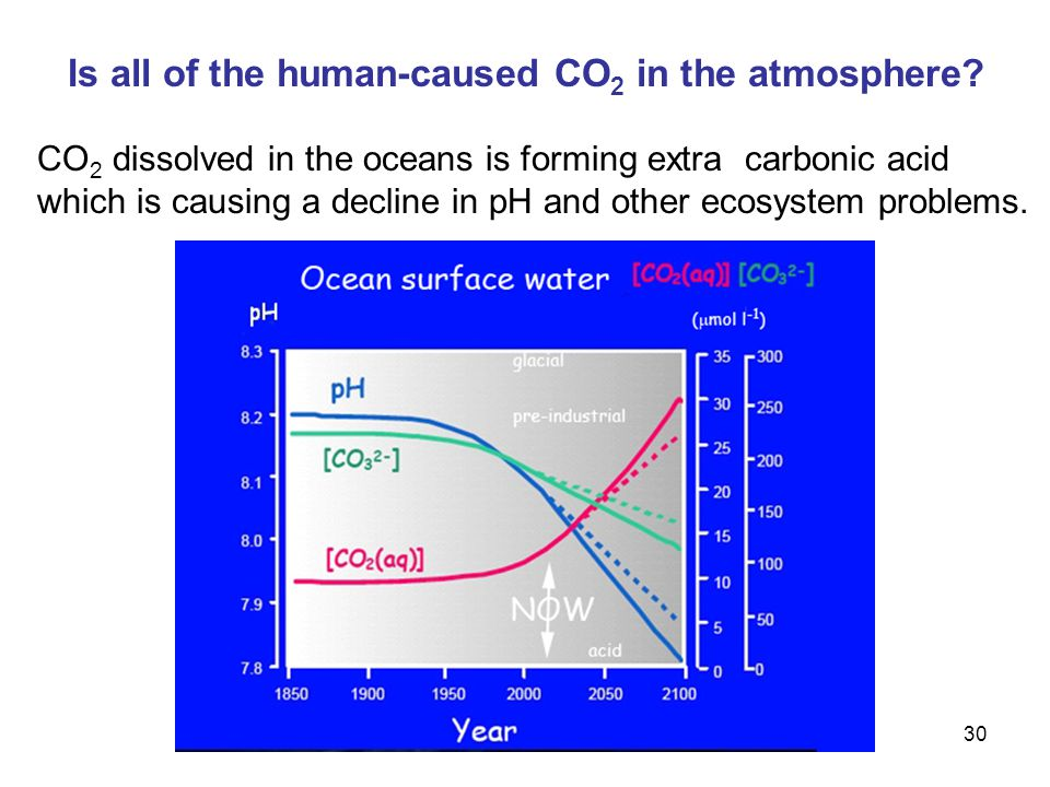 30 Is all of the human-caused CO 2 in the atmosphere.