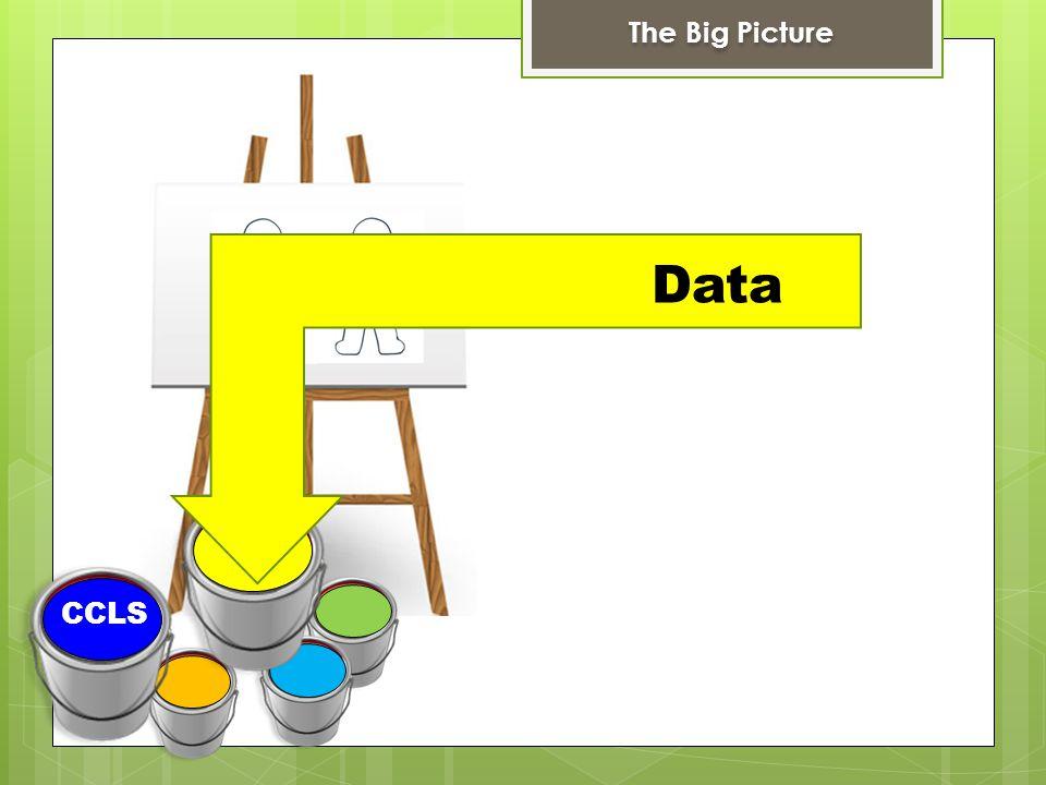 CCLS DDI The Big Picture Data