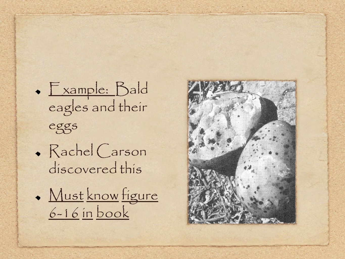 Example: Bald eagles and their eggs Rachel Carson discovered this Must know figure 6-16 in book