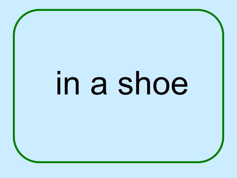 in a shoe