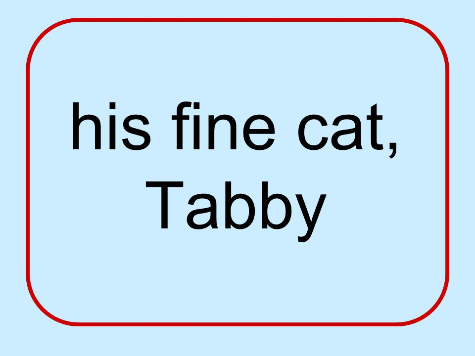his fine cat, Tabby