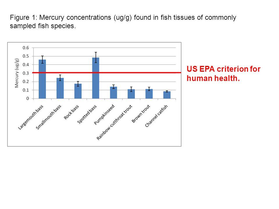 US EPA criterion for human health.