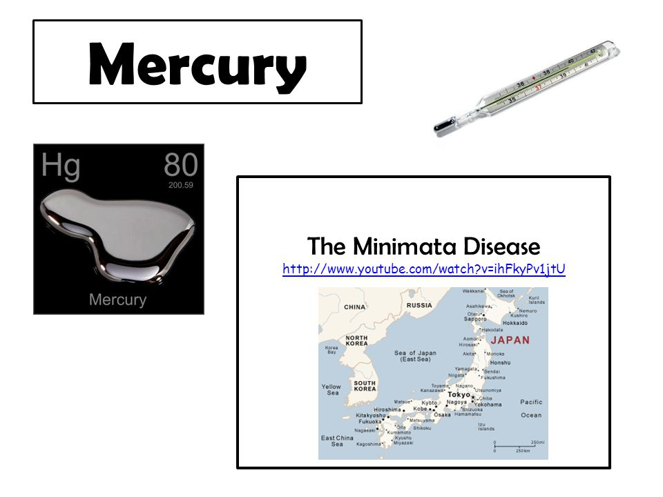 Figure 1: Mercury concentrations (ug/g) found in fish tissues of commonly sampled fish species.
