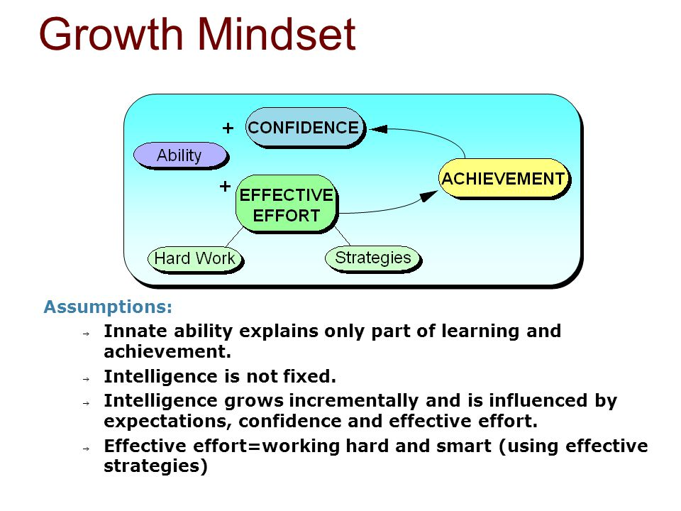 Assumptions:  Innate ability explains only part of learning and achievement.