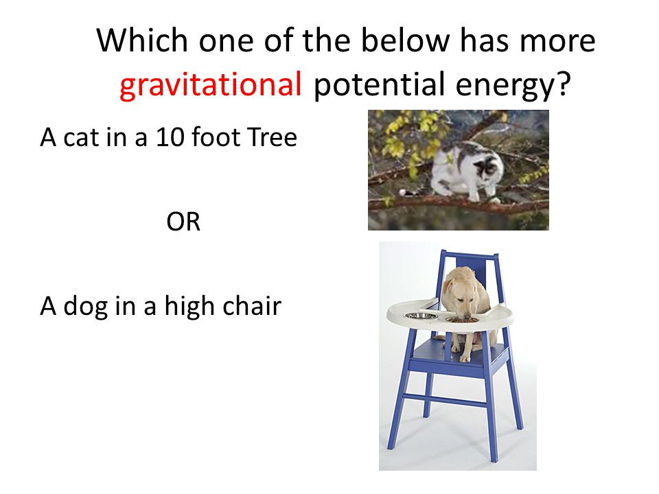 Which one of the below has more gravitational potential energy.
