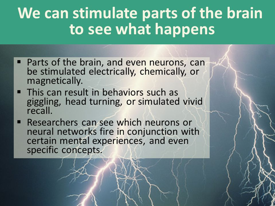 We can stimulate parts of the brain to see what happens  Parts of the brain, and even neurons, can be stimulated electrically, chemically, or magneti