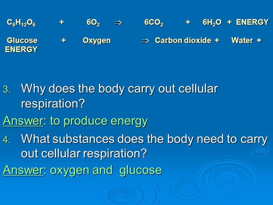 C 6 H 12 O 6 + 6O 2  6CO 2 + 6H 2 O + ENERGY Glucose + Oxygen  Carbon dioxide + Water + ENERGY C 6 H 12 O 6 + 6O 2  6CO 2 + 6H 2 O + ENERGY Glucose